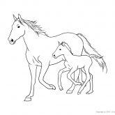Tiere-Bauernhof-Pferd-Ausmalen
