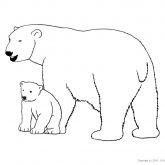 Tiere-Nordpol-Eisbär-Ausmalen