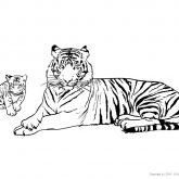 Tiere-Regenwald-Tiger-Ausmalen