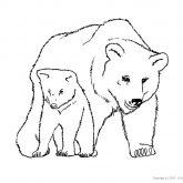 Tiere-Wald-Bär-Ausmalen