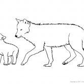 Tiere-Wald-Wolf-Ausmalen