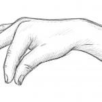 Hand-Etwas-Halten-Zeichnung-01-Bleistift