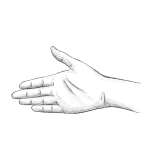 Hand drawing - stretching - pencil