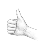 Hand Drawing - Thumb Up - Pencil