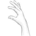 Hand Drawing - Simple - Pencil