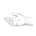 hand drawing - rich - pencil