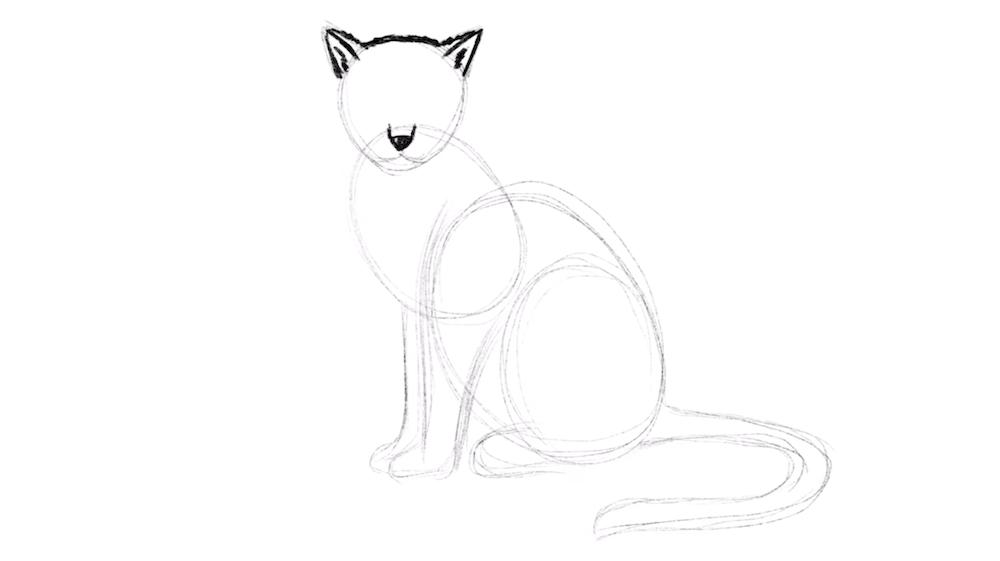 Schnauze und Ohren einer Katze zeichnen