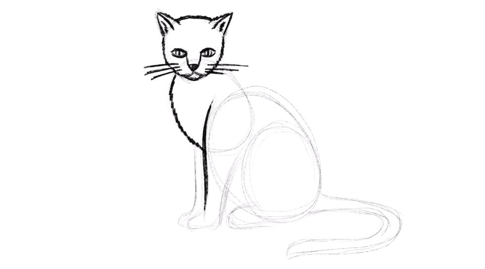 Vorderpfoten der Katze einzeichnen