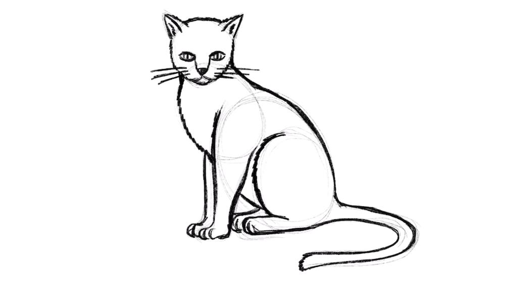 Zeichne nun den Schwanz der Katze ein