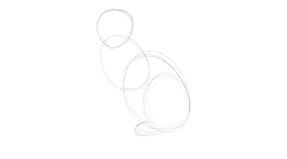 Hintere Pfoten der Katze skizzieren