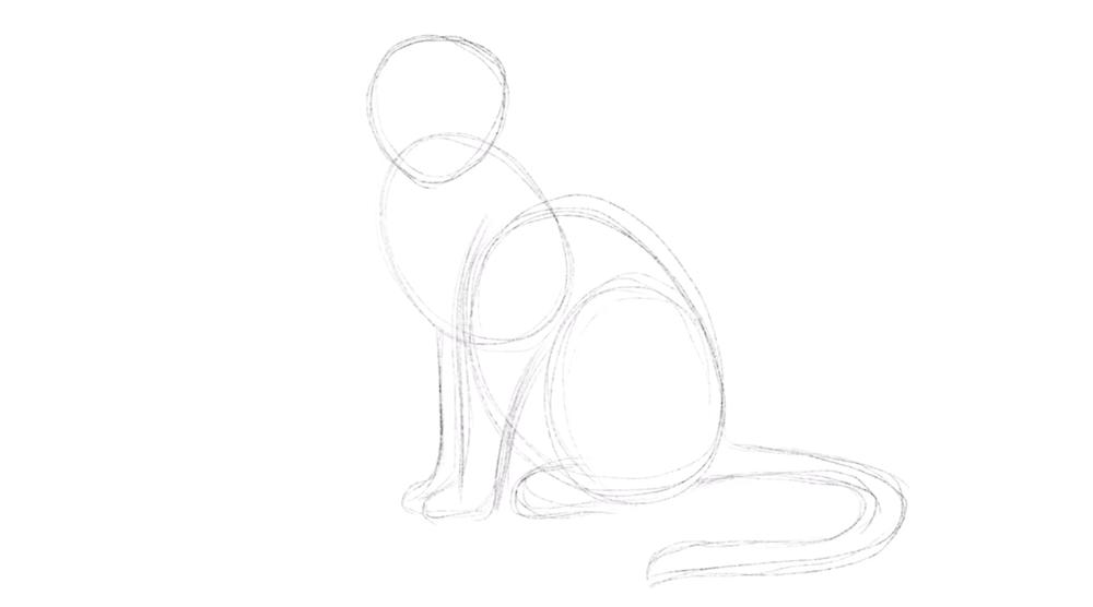 Schwanz der Katze einzeichnen
