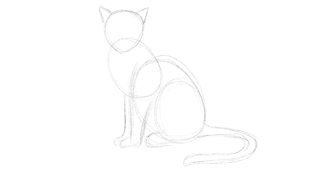 Zeichne die Ohren der Katze
