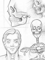 Bleistiftzeichnung Skizze einfach Körperstudie