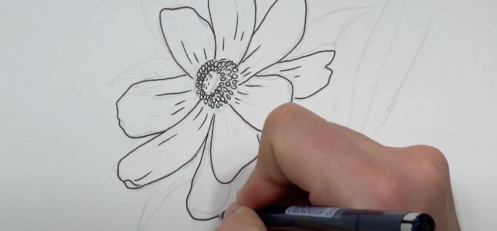 Außenkonturen der Blume mit einem Fineliner nachzeichnen