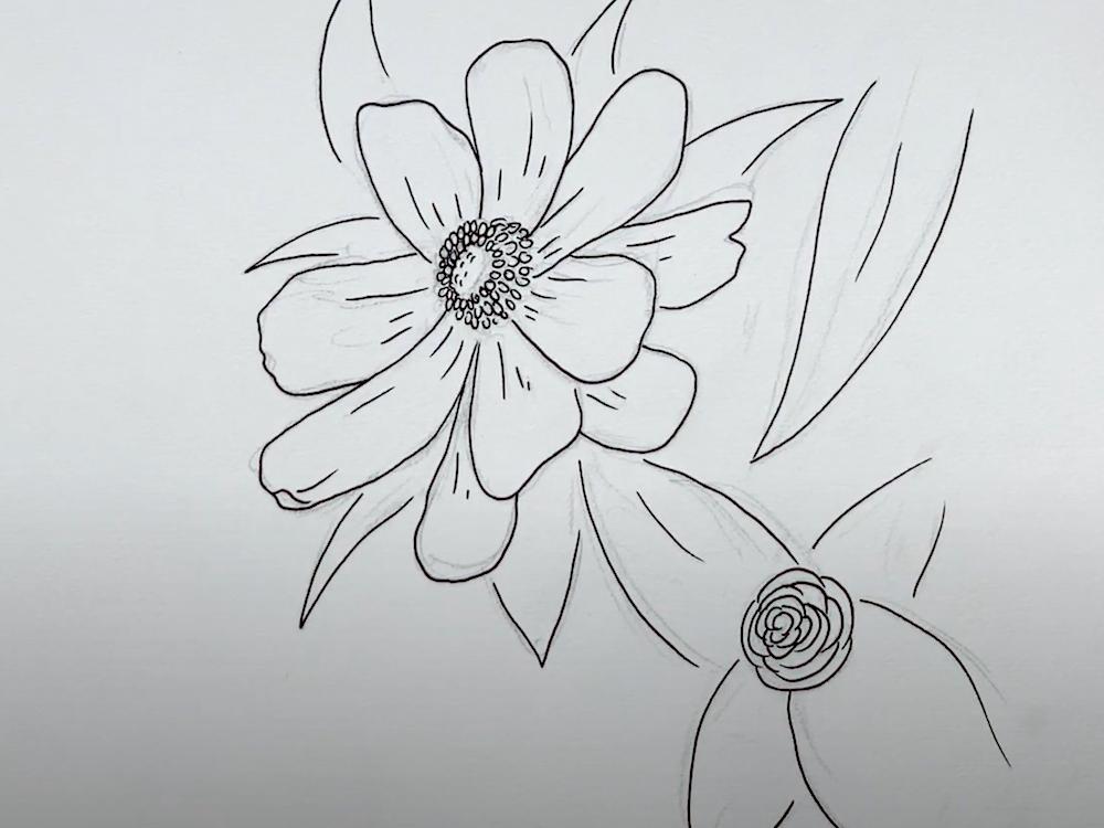 Zeichne alle Außenkonturen der Blume mit dem Fineliner nach