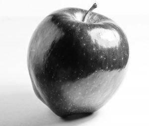 Apple still life gray