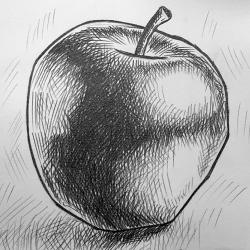 Apfel Zeichnen Schritt für Schritt Anleitung