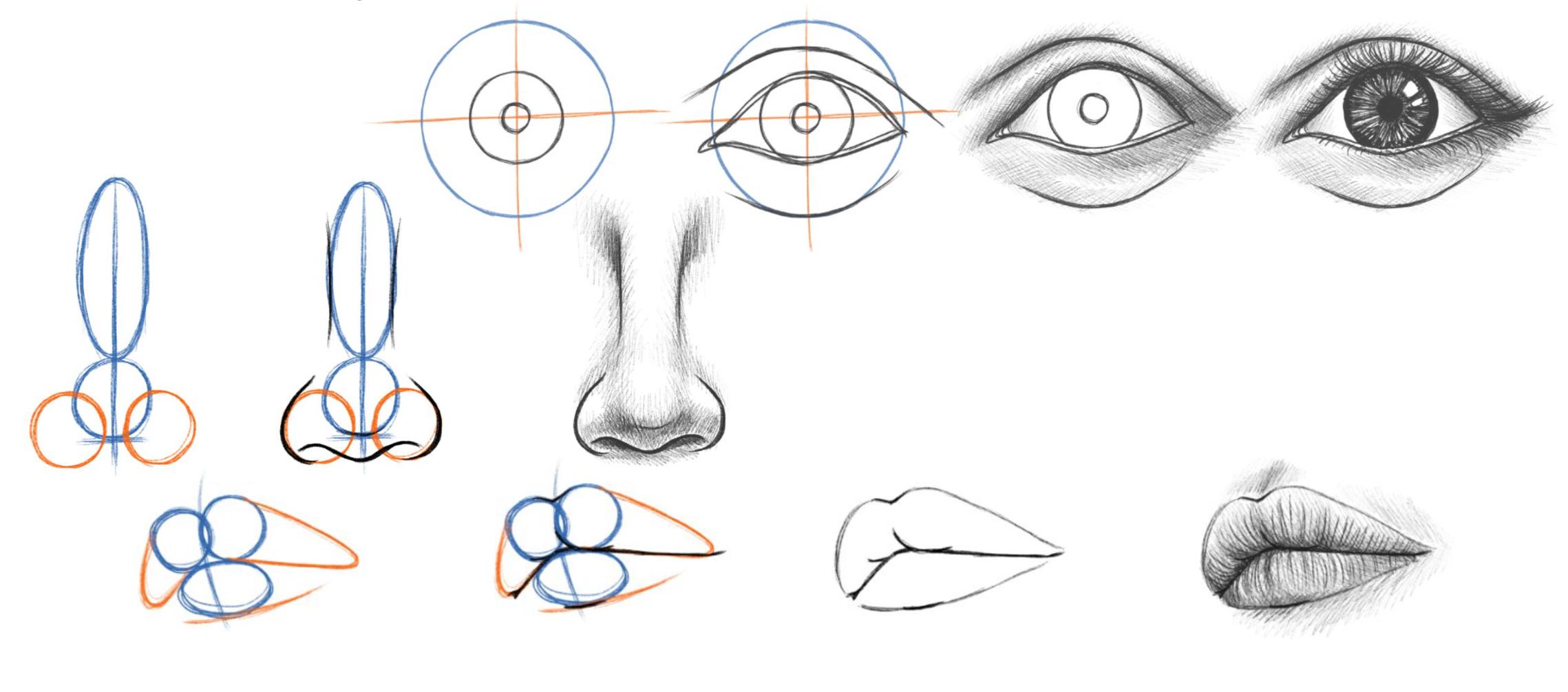 Augen Nase und Mund zeichnen