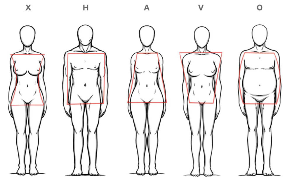 Menschen Körperformen Übersicht