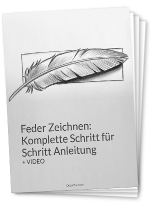 Feder zeichnen PDF
