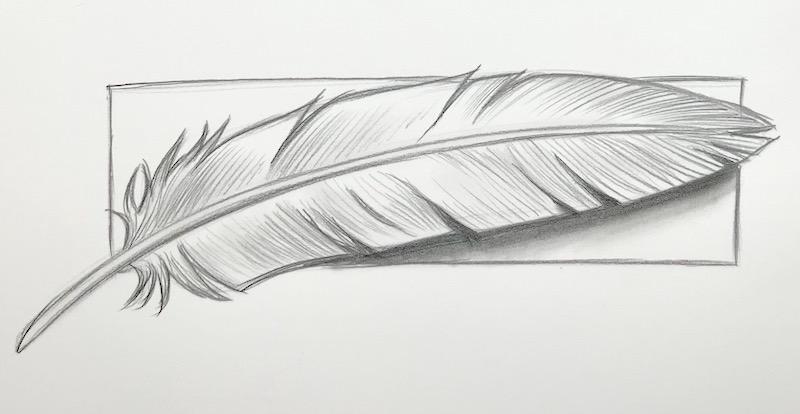 Zeichnung einer Feder