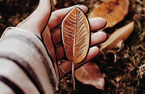 Herbst zeichnen Motive und Herbst Ideen