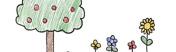 Zeichnen lernen für Kinder ab 4